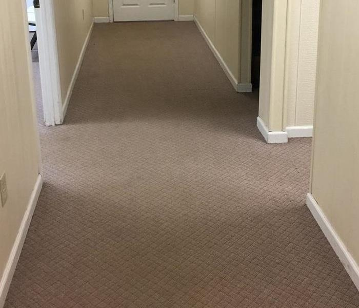 Carpet Cleaning High Traffic Office Before