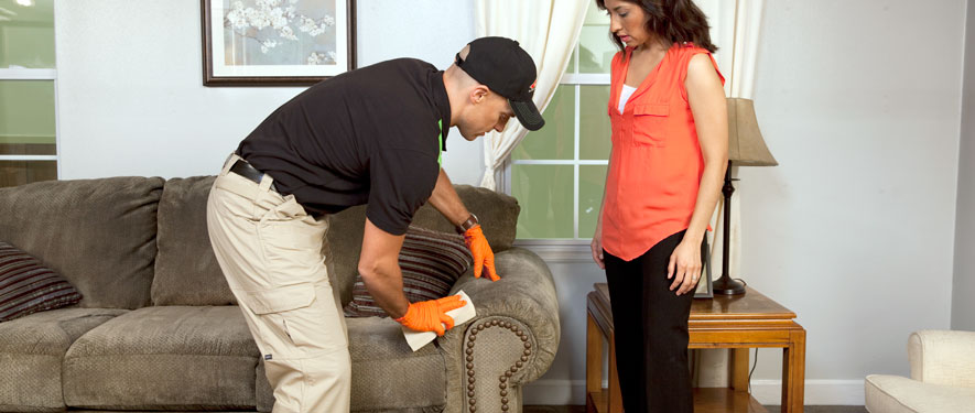 Americus, GA carpet upholstery cleaning